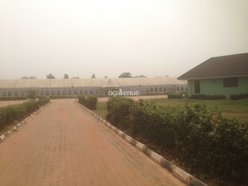 1485 Marquee Edo Hotel